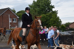 Maghera Agri Show And Country Fayre part 2 518 (640x427)