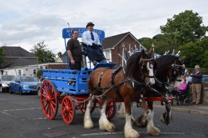 Maghera Agri Show And Country Fayre part 2 531 (640x427)